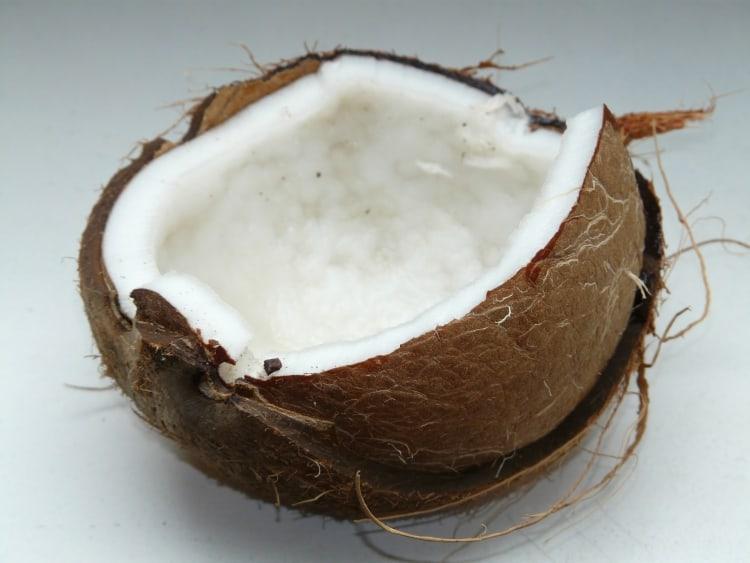 Besonderheiten von Kokos |Premium