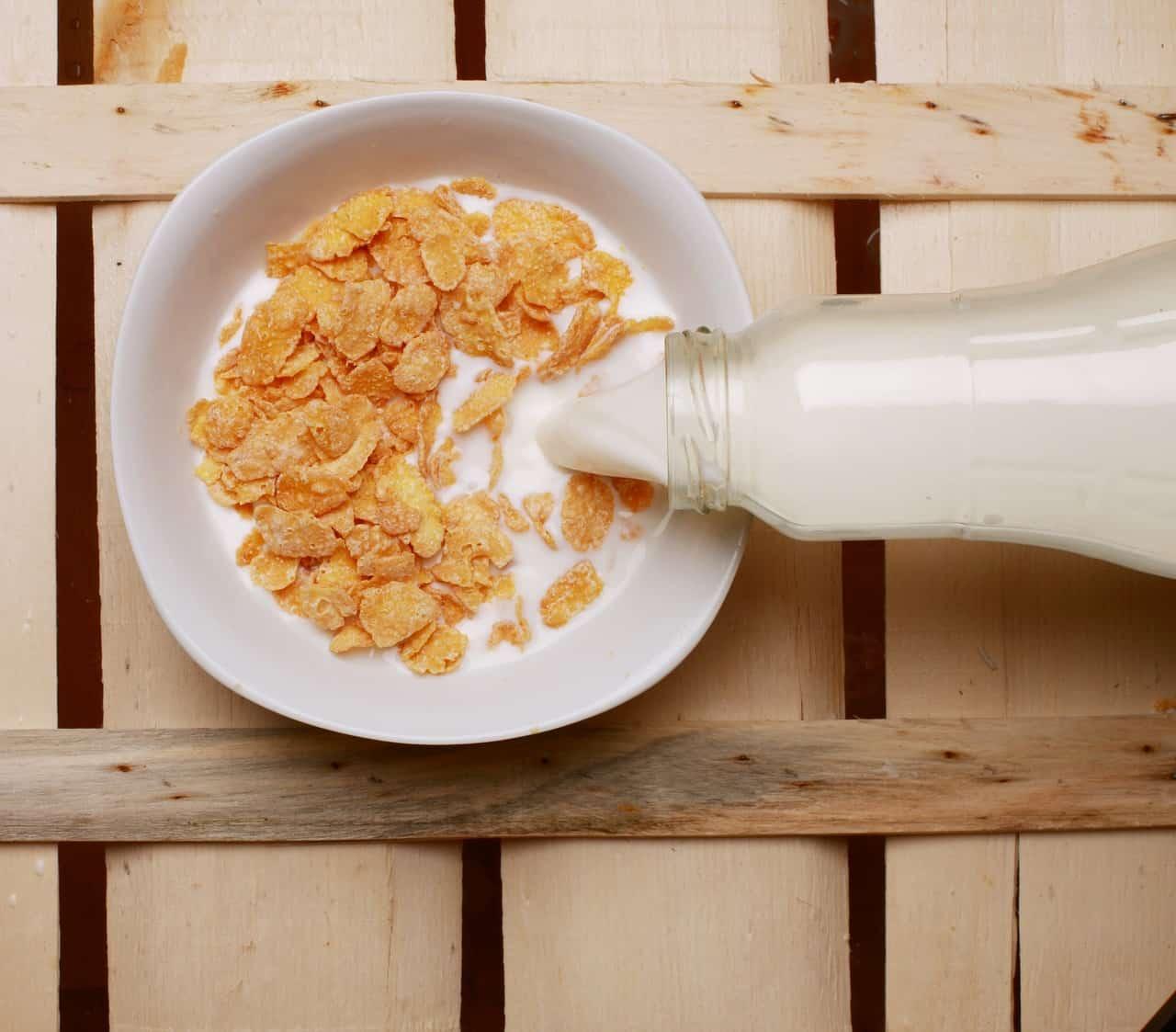 Nahrungsmittelunverträglichkeit Laktoseintoleranz